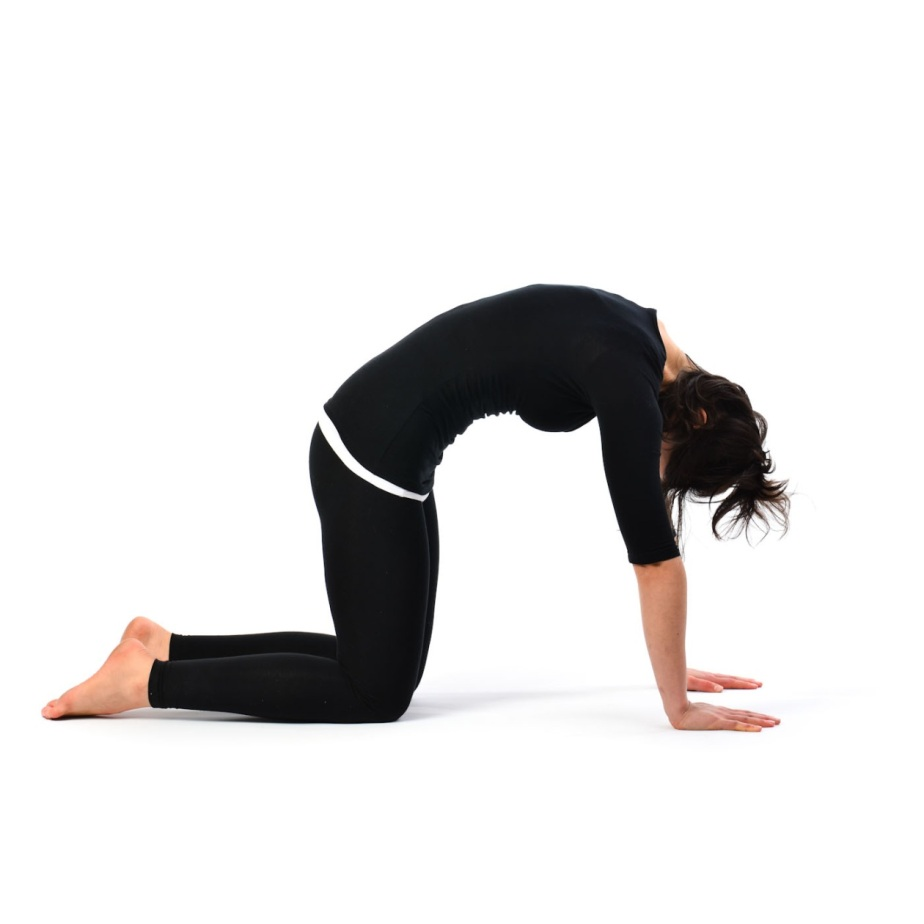 Cat-Stretch-Pose-Marjariasana-22
